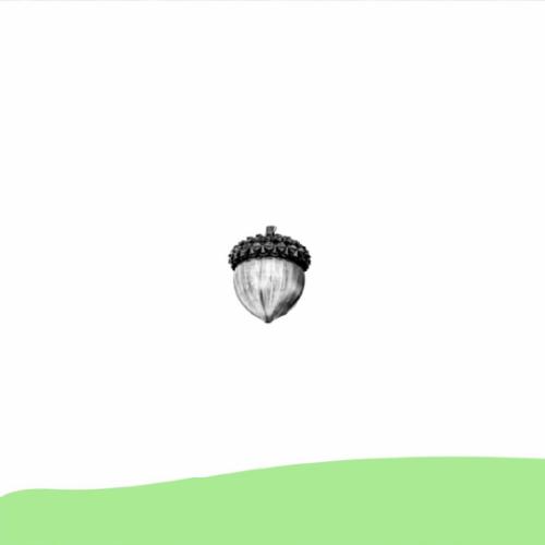 piva-post-crescita-01